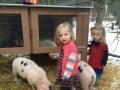 wendt-4h-piglets-owners-2d8d87c56fba28c617abe1cfd29a1e5cd2cbe929