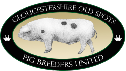 Gloucestershire Old Spots Pig Breeders United